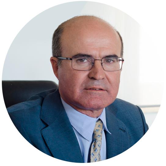 Luis de Pedro Alcaide